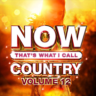 Produktbilde for Now That's What I Call Country Volume 12 (CD)
