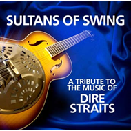 Produktbilde for A Tribute To The Music Of Dire Straits (CD)