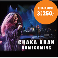 Produktbilde for Homecoming (CD)