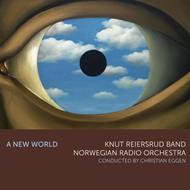 Produktbilde for A New World (CD)