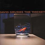 The Thicket (CD)