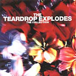 Teardrop Explodes Collection (CD)