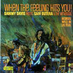 When The Feeling Hits You (CD)