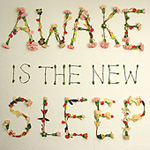 Awake Is The Sleep (CD)
