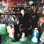 What I Did After My Band Broke Up: Best Of Steve Wynn (2CD)