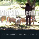 In Pursuit Of Your Happiness (CD)