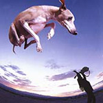 Flying Dog (CD)