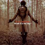 What Did He Say (CD)