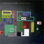 Slow Fruit (CD)