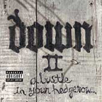 Down II (CD)