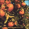 Dyed In The Wool (USA-import) (CD)