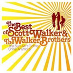 The Sun Ain't Gonna Shine: The Best Of Scott Walker & Walker Brothers (CD)
