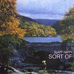 Sort Of (CD)