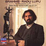 Brahms: Piano Works (CD)
