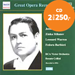 Produktbilde for Verdi: Il Trovatore (CD)