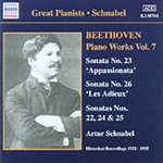 Beethoven: Piano Works, Vol 7 (CD)