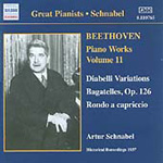 Beethoven: Piano Works, Vol 11 (CD)