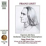 Liszt: Complete Piano Music, Volume 16 - Beethoven Transcriptions (CD)