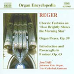 Reger: Organ Works Vol 4 (CD)