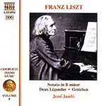 Liszt: Piano Works, Vol. 8 (CD)