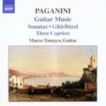 Paganini: Guitar Music (CD)