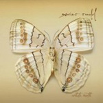 White Moth (CD)