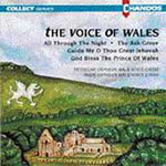 The Voice of Wales (CD)