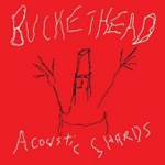 Acoustic Shards (CD)