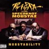 Mobstability (CD)
