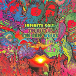 Infinite Soul: The Best Of The Grip Weeds (CD)