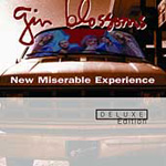 New Miserable Experience - Deluxe Edition (2CD)