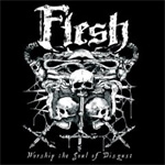 Produktbilde for Worship The Soul Of Disgust (USA-import) (CD)