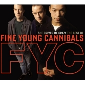 She Drives Me Crazy: The Best Of The Fine Young Cannibals (2CD)