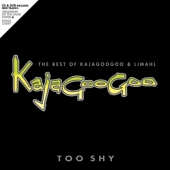 Too Shy: The Best Of Kajagoogoo And Limahl (m/DVD) (CD)