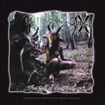 Call Of The Wood (CD)