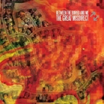 The Great Misdirect (CD)
