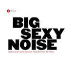 Big Sexy Noise (CD)