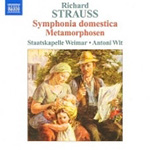 Strauss, R: Symphonia domestica; Metamorphosen (CD)