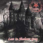 Lost In Shadows Grey (CD)