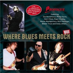 Where Blues Meets Rock Vol. 8 (CD)