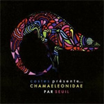 Costes Presente Chamaeleonidae Par Seuil (CD)