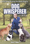 Dog Whisperer - Sesong 4 Del 1 (DVD - SONE 1)