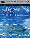 A Bigger Splash (UK-import) (Blu-ray + DVD)