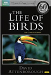 The Life Of Birds (UK-import) (DVD)