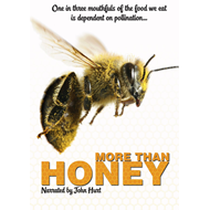 More Than Honey (UK-import) (DVD)