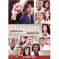 Grey's Anatomy - Sesong 10 (UK-import) (DVD)