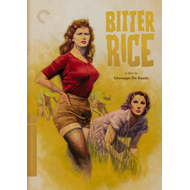 Produktbilde for Bitter Rice - Criterion Collection (DVD - SONE 1)