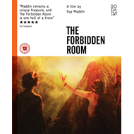 The Forbidden Room (UK-import) (Blu-ray + DVD)