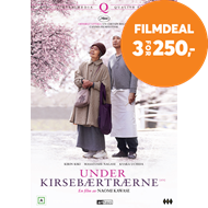 Produktbilde for Under Kirsebærtrærne (DVD)