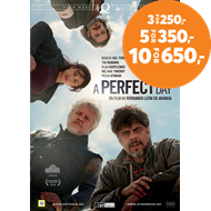 Produktbilde for A Perfect Day (DVD)